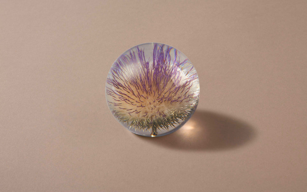 Purple Thistle Large Paperweight