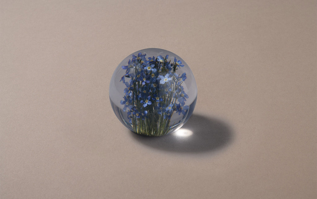 Blue Forget-Me-Not Paperweight