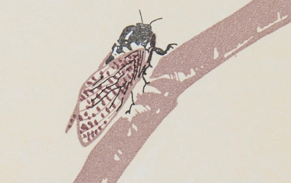 Letterpress Cicada Greeting Card