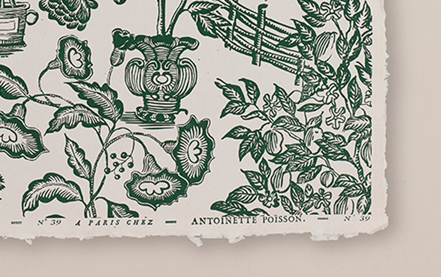Antoinette Poisson Papier Dominoté No 39, Jardin, Green