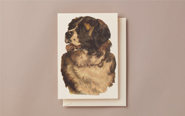 Embossed Die Cut Greeting Card, St Bernard
