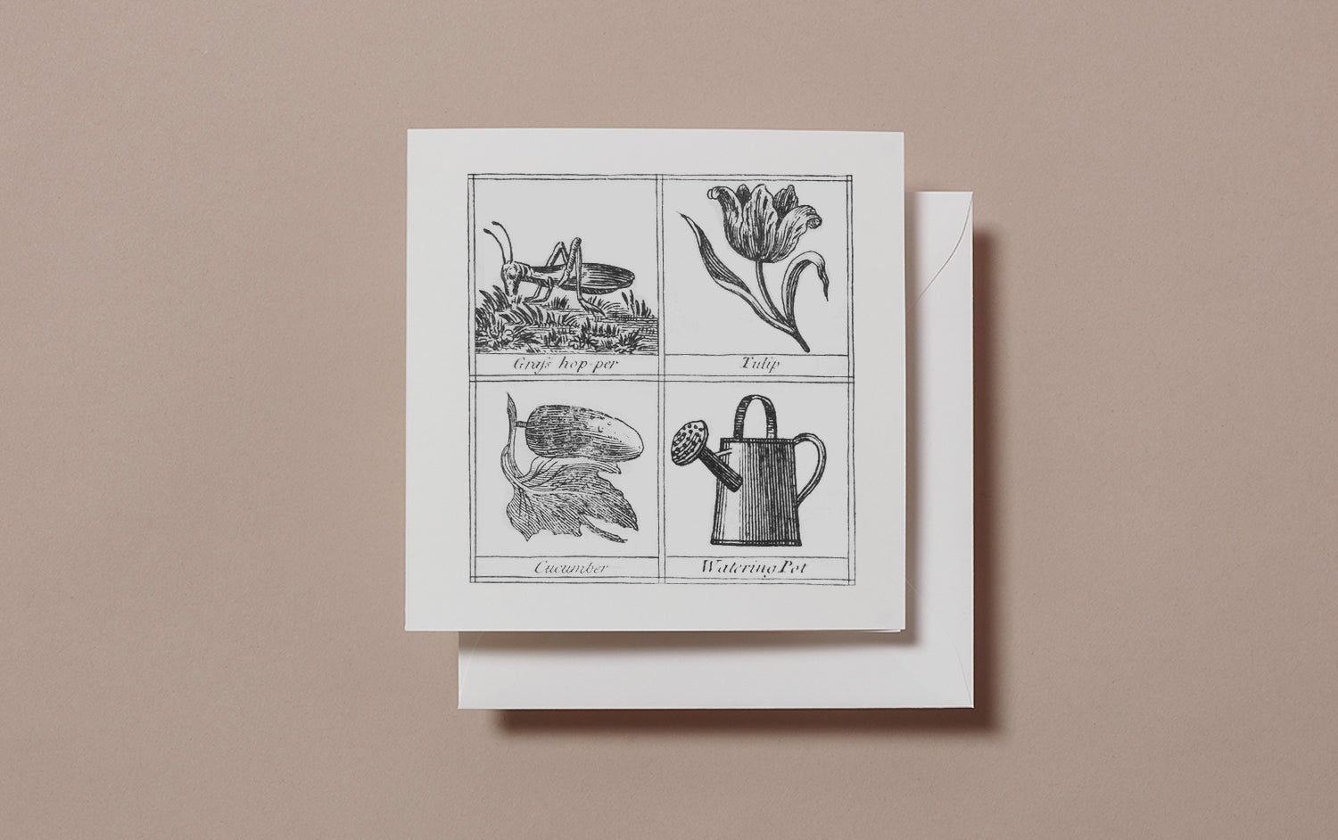 Square Miscellany Greeting Card, Grasshopper