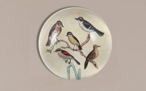 John Derian Paperweight, Feathered Friends