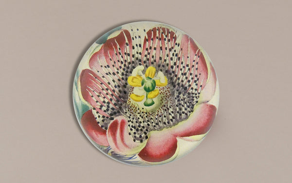 John Derian Paperweight, Passion Fruit Flower