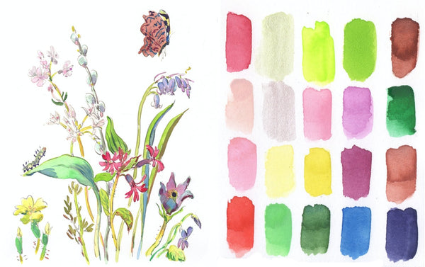 Japanese Seasons Watercolour Set, Spring