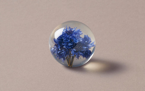 Blue Cornflower Large Paperweight