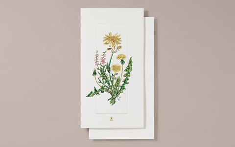 Embossed Wild Dandelion Greeting Card