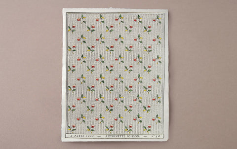 Antoinette Poisson Papier Dominoté No 54, Berries