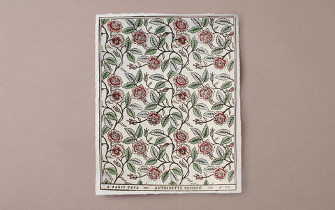 Antoinette Poisson Papier Dominoté No 58, Buisson de Roses