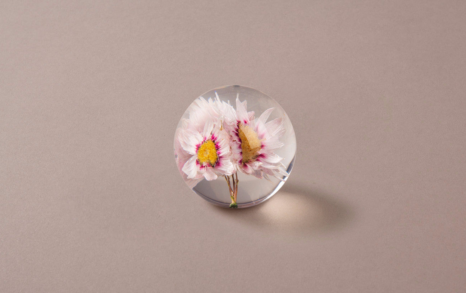 Pink Paper Daisy Paperweight