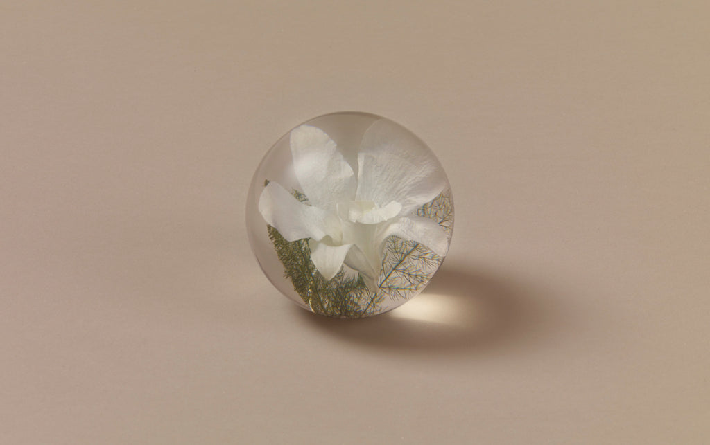 White Orchid Paperweight