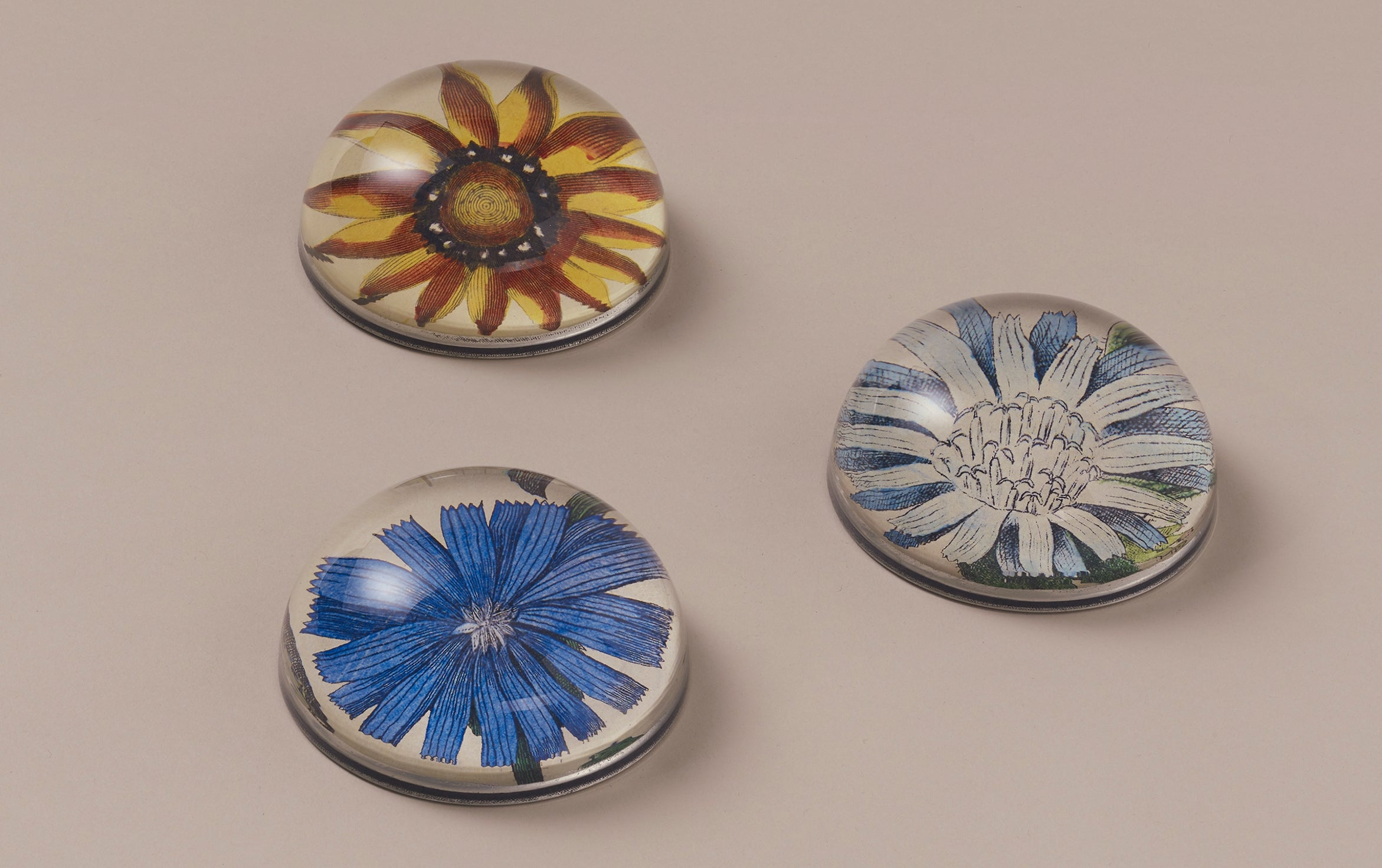John Derian Paperweights, Blues