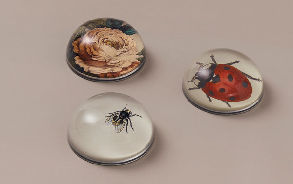 John Derian Paperweights, Garden Assortment
