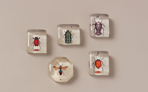 John Derian Paperweights, Insect Charms