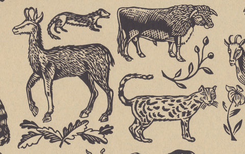 J Jeffery Paper, Animals