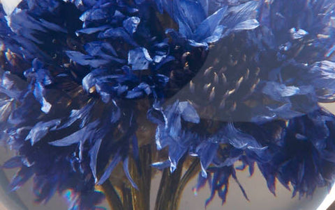 Blue Cornflower Paperweight