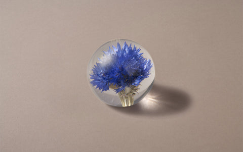 Blue Cornflower Small Paperweight
