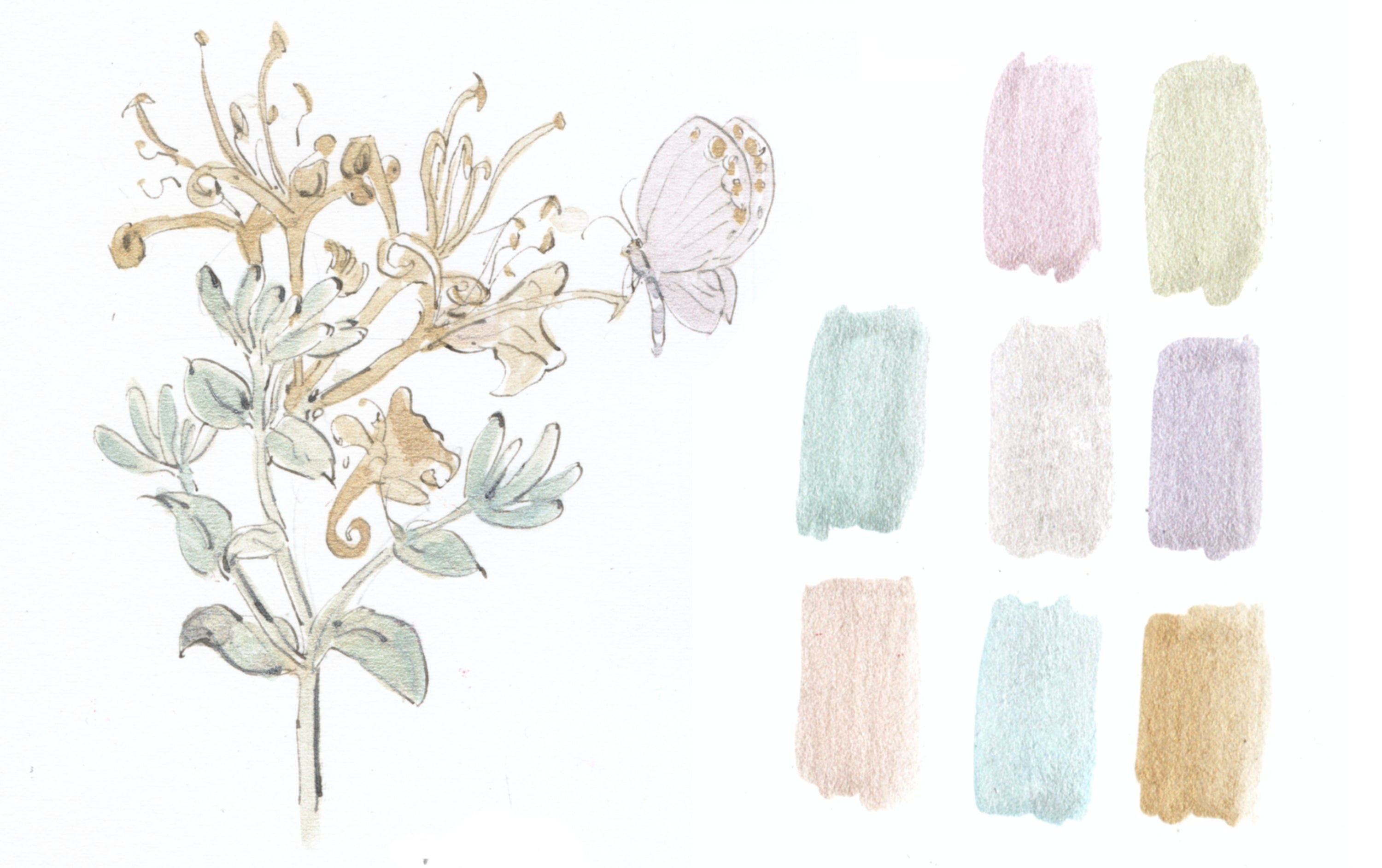 Japanese Pearl Watercolour Set