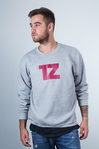 T-ZON TZ-LOGO CREWNECK-SWEATER (grey)