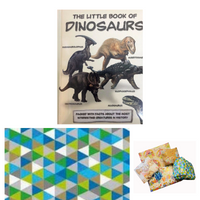 Pass the Parcel Party Game - Little Book of Dinosuars