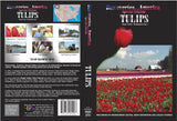 Discoveries America Special Edition Tulips