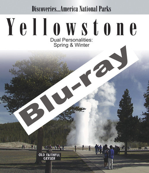 Discoveries America National Parks, Yellowstone shows you all there is to do at Yellowstone all throughout the year.