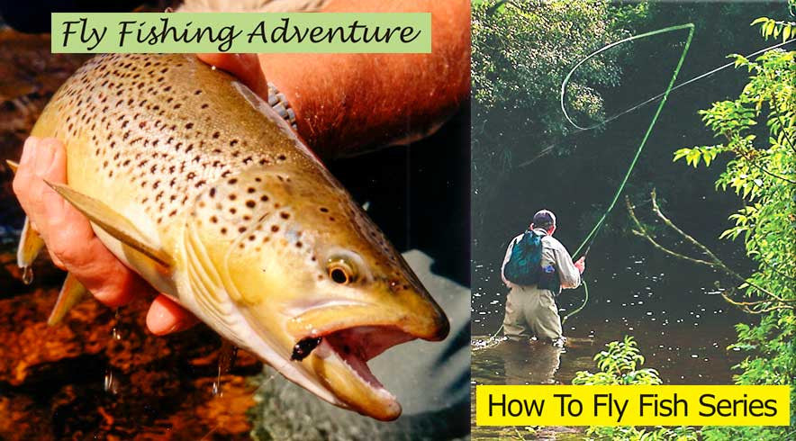 Fly Fishing Adventure / How To Fly Fish