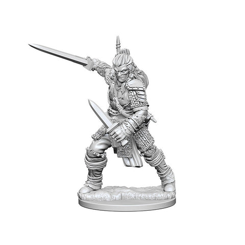Pathfinder Deep Cuts Unpainted Miniatures Human Male Fighter