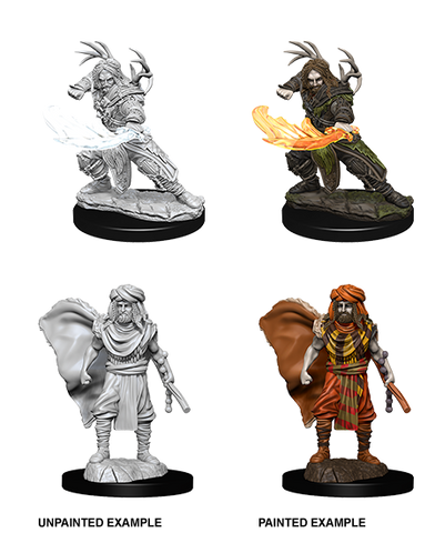 D&D Nolzurs Marvelous Unpainted Miniatures Male Human Druid