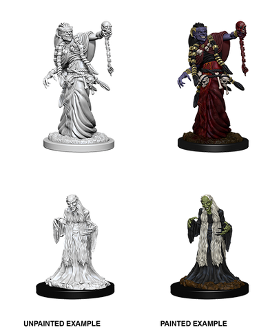 D&D Nolzurs Marvelous Unpainted Miniatures Green Hag & Night Hag