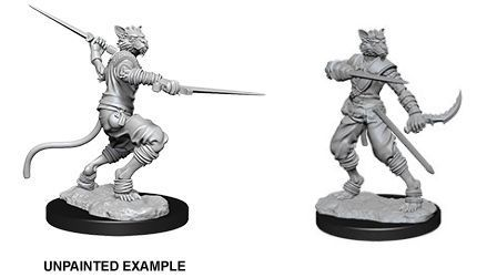 D&D Nolzurs Marvelous Unpainted Miniatures Male Tabaxi Rogue