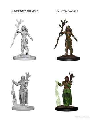 D&D Nolzurs Marvelous Unpainted Miniatures Human Female Druid