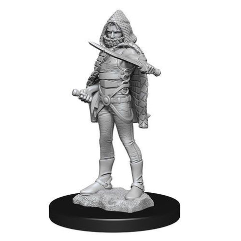 D&D Nolzurs Marvelous Unpainted Miniatures Darkling Elder & Darklings
