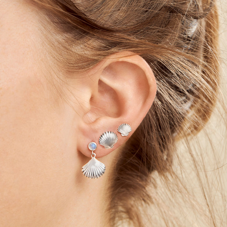 Seashell Moonstone Studs