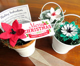 Seed paper poinsettias in white decorative wedding pails