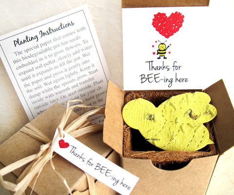 Recycled Ideas Favors plantable paper bee favor with box and plantable pot