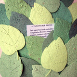 plantable paper birch leaves in assorted green seed paper