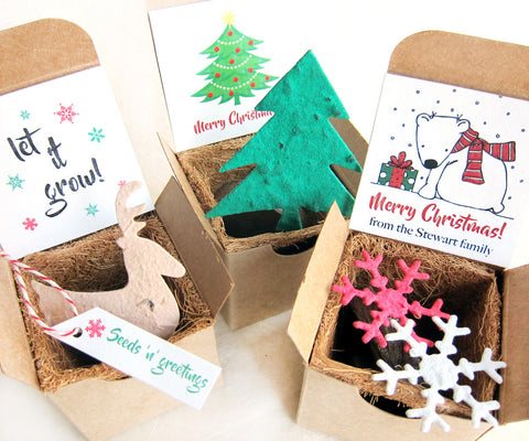 Christmas seed paper gift box with plantable paper and pots recycledideas