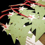Christmas Trees Seed Paper