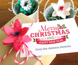Recycled Ideas Favors plantable paper poinsettia with gift box and card
