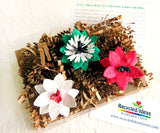 Recycled Ideas Favors plantable seed paper 3-D flowers