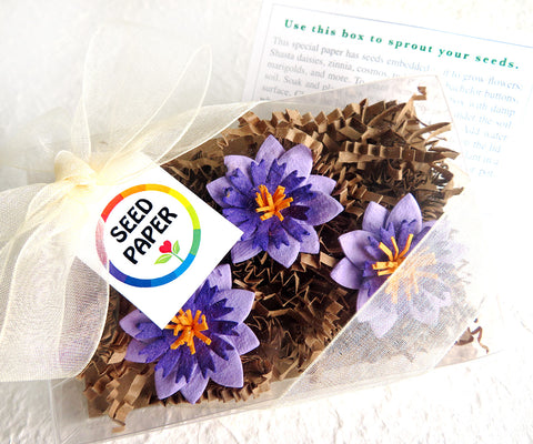 Unique Gift Blue Seed Paper Flowers Gift Box Set Paper Flowers