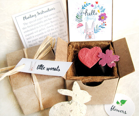 plantable seed paper bunny recycledideas favors gift box