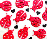 seed paper plantable lady bugs