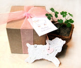 plantable paper lambs with gift box and pot