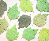 Recycled Ideas Favors plantable paper mulberry leaves in greens