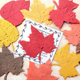 Recycled Ideas Favors plantable paper maple leaves in fall colors with card