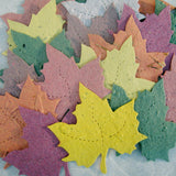 Recycled Ideas Favors plantable paper maple leaves in assorted colors