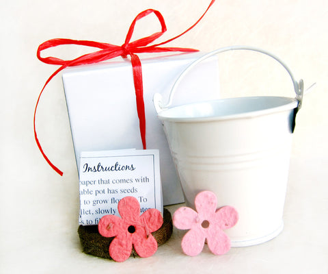 Recycled Ideas Favors plantable paper daisy favors with decorative pails and boxes