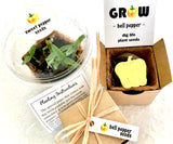 bell pepper seed paper with sprouts